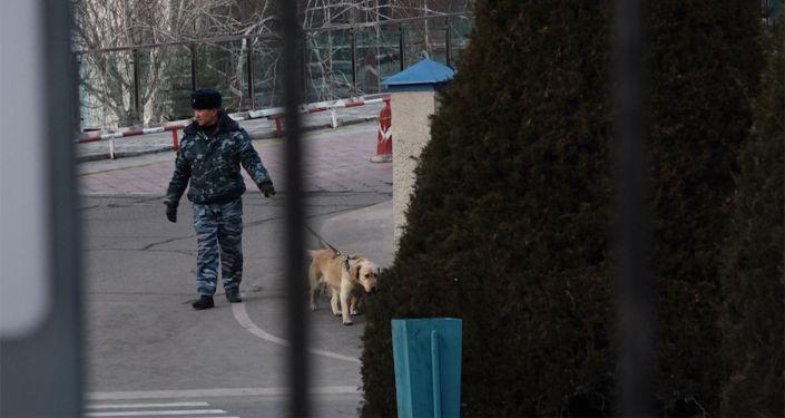 Сегодня, 5 февраля, неизвестный сообщил, что в аэропорту Манас якобы заложена бомба.