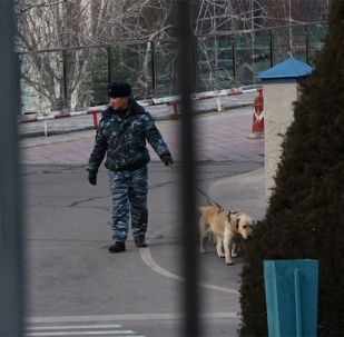 Бүгүн, 5-февралда, белгисиз бирөө эл аралык Манас аба майданына бомба коюлганы туурасында кабарлаган.