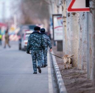 Сотрудник МВД с собакой в аэропорту Манас. Архивное фото