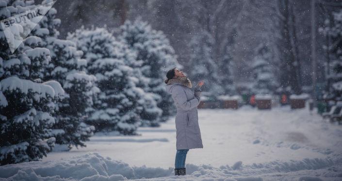 Карга оронгон аяздуу Бишкек. Февралдагы 12 сүрөт