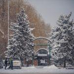 С начала года в Бишкеке не было обильных осадков, а погода напоминала весеннюю