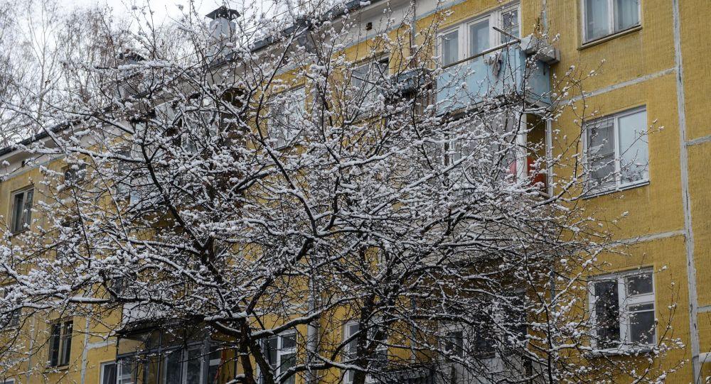 Снег на ветках деревьев. Архивное фото