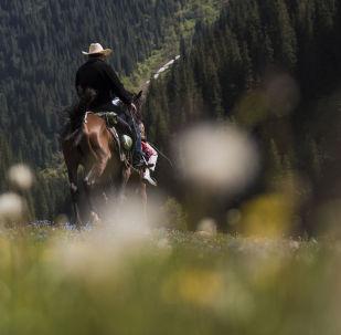 Мужчина на лошади в Григорьевском ущелье.  Архивное фото