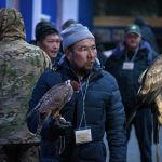 В фестивале также будут участвовать беркутчи из Кыргызстана. Они отправили в КСА 24 хищных птицы, 15 из которых — беркуты.