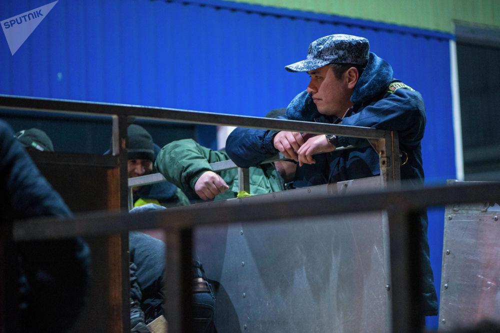 Утром 28 февраля орлов, яков и тайганов из Кыргызстана отправили в Саудовскую Аравию для участия в этнофестивале Вселенная кочевников в рамках Camel Fest