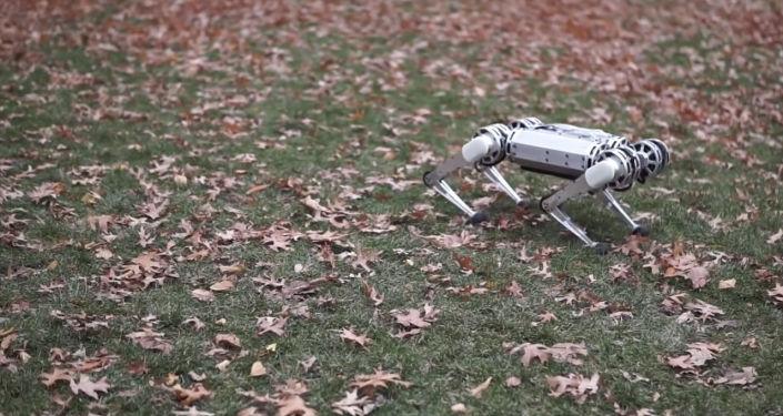 Разработчики из Массачусетского технологического института (MIT) научили своего четвероногого робота Mini Cheetah делать обратное сальто.