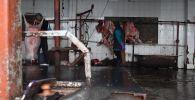 В Оше с 3 марта закрыли семь убойных цехов