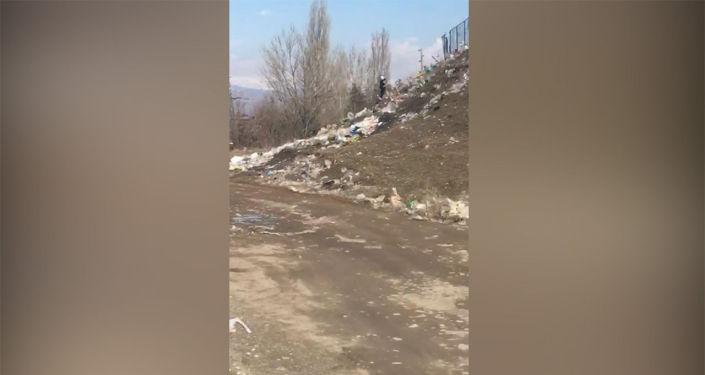 Видео записал читатель Sputnik Кыргызстан.