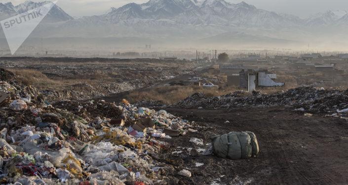Мусор на полигоне близ Бишкека. Архивное фото