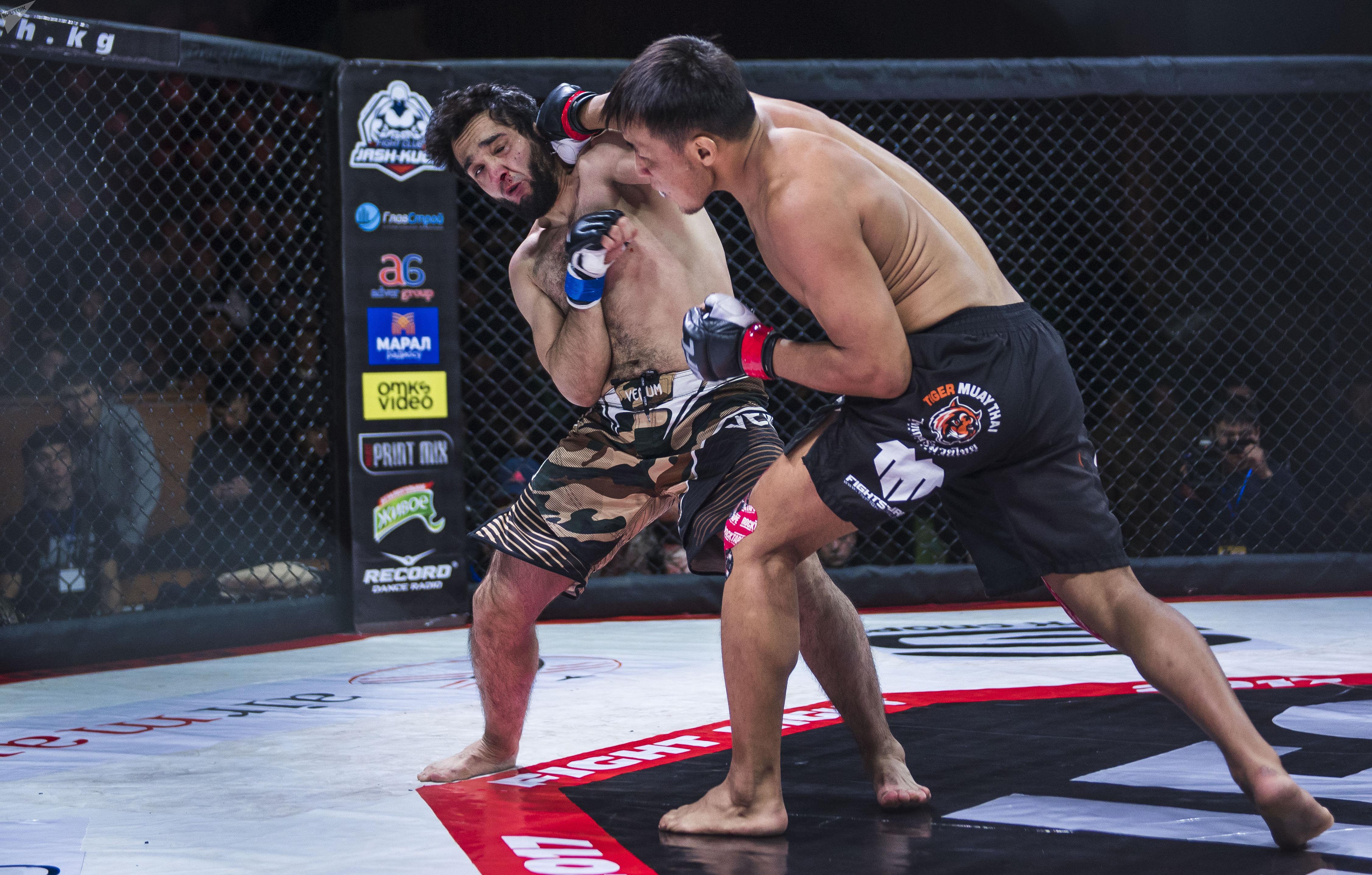 Бойцы по боям без правил кыргызстанец Бахтияр Тойчубаев и  спортсмен из Чечни Ибрагим Бахромов на турнире JFC MMA 3 в Бишкеке