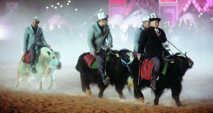 Кыргызстанцы на яках на этнофестивале Camel Fest в Саудовской Аравии