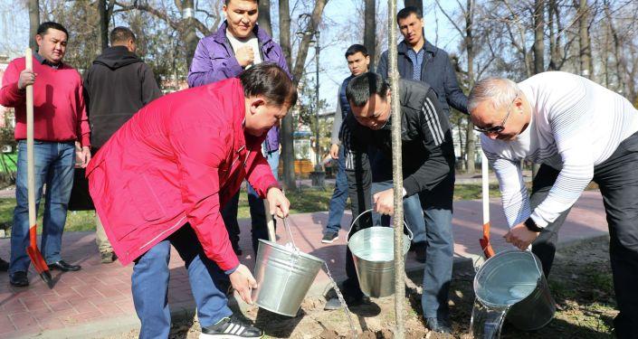 Они посадили 350 саженцев дуба, убрали опавшую листву и мусор