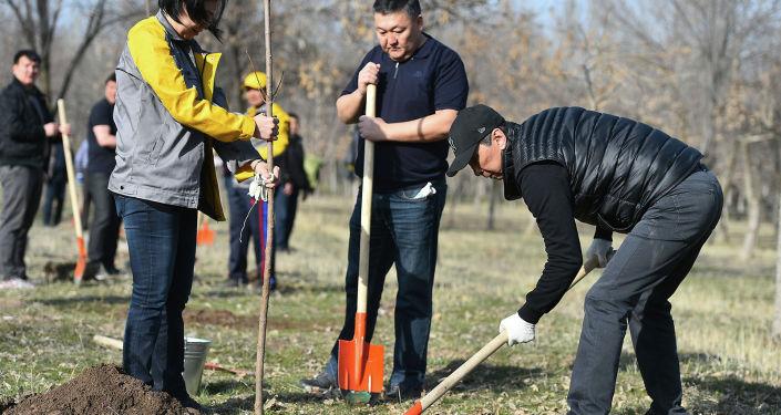По сообщению пресс-службы мэрии, в Бишкеке участие в мероприятиях приняли около 50 тысяч человек, более 550 организаций и учреждений.