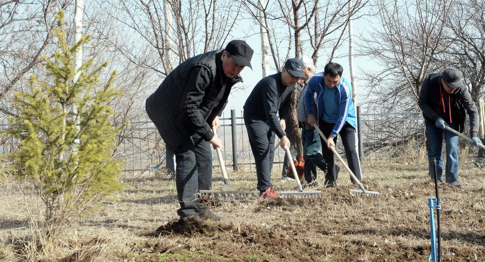Бүгүн, 16-мартта, Кыргызстанда жалпы республикалык ишембилик болду