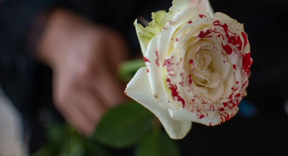 Женщина держит розу. Архивное фото