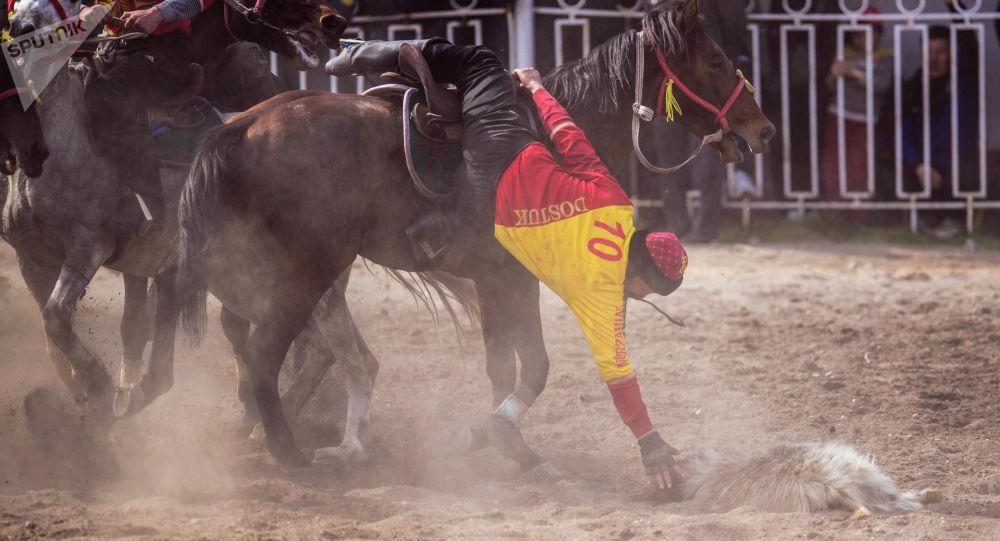 Көчмөндөр оюну: Оштун көк бөрүчүлөрү Бишкекти утуп финалга чыкты