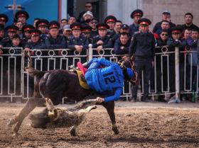 Игроки по кок-бору от таласского Ынтымака и ошского Достука во время финального состязания на ипподроме Ак-Кула в день Нооруза в Бишкеке