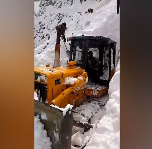 Оказавшихся под снежной массой людей спасли менее чем за 10 минут.
