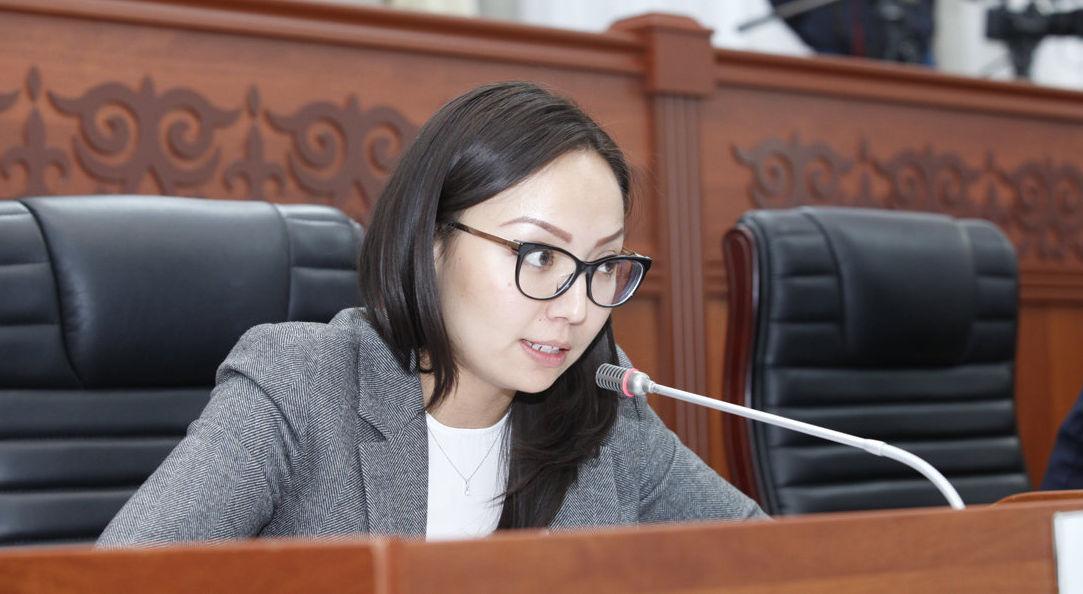 Депутат ЖК Айсулуу Мамашова на заседании
