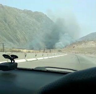 Огонь тушили два пожарных расчета.