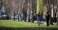 Дети у плакучей ивы в Бишкеке. Архивное фото