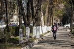 Парень с мобильным телефоном идет по одной из улиц Бишкека. Архивное фото