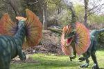 Сейил бактагы динозаврлардын узундугу бир метрден үч метрге чейин жетет.