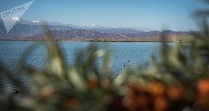 Берег Иссык-Куля. Архивное фото
