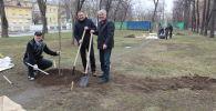 Москвада жашаган мекендештер Айтматов атындагы сейил бакты тазалашты