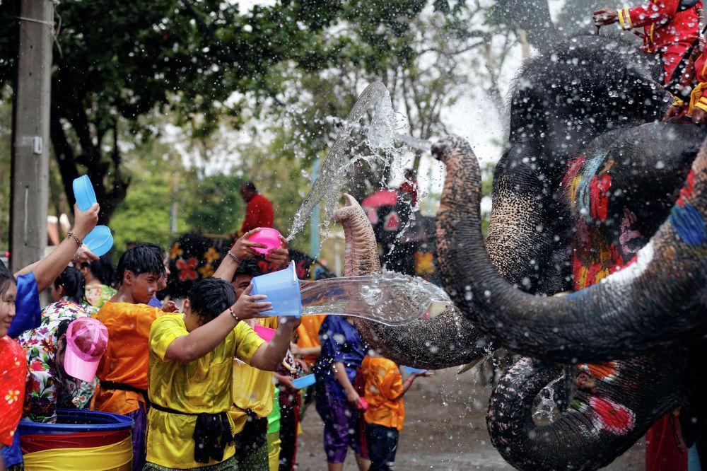 Слоны и люди играют с водой в рамках празднования водного фестиваля Сонгкран, который знаменует начало тайского Нового года в Аюттхая