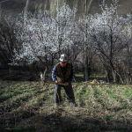 Баткен өрүгү Кыргызстанда гана эмес, чет өлкөдө дагы бааланат