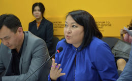 Эксперт по доказательной медицине и клиническим стандартам Министерства здравоохранения Бермет Барыктабасова в пресс-центре Sputnik Кыргызстан