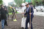 В Бишкеке молодожены посадили 30 берез и сделали подарки детям из малообеспеченных семей вместо проведения пышного свадебного торжества
