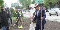 Жаш жубайлар Залкар Назарбек уулу менен Айжамал Замирбекова дүңгүрөтүп той берүүнүн ордуна Бишкек шаарындагы мамлекеттик цирктин маңдайына ак кайыңдын 30 көчөтүн отургузду.