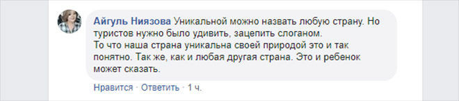 Комментарий Айгуль Ниязовой