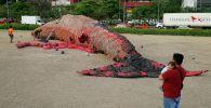 На Филиппинах появилась 24-метровая инсталляция Плач мертвого кита, сделанная из пластикового мусора. Архивное фото