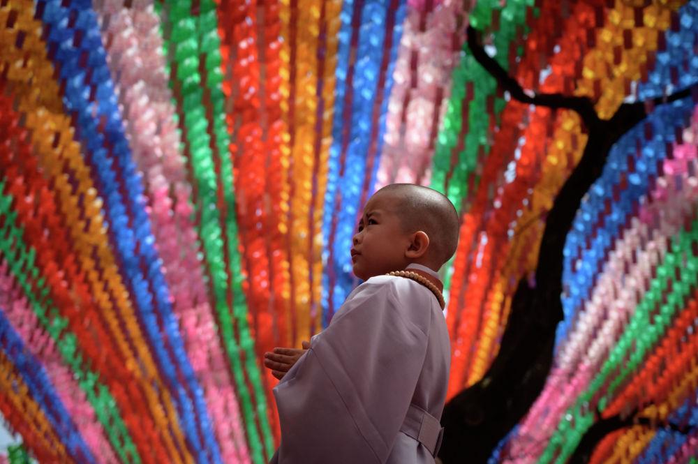 Сеул шаарында будда храмындагы жаш кечил