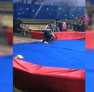 В Сети появилось видео инцидента, где питон душил артиста во время представления цирка-шапито. Кадры, снятые одним из зрителей, разлетелись по социальным сетям.