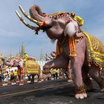 Десять слонов из лагеря Аюттхая прошли мимо Большого дворца на праздновании коронации Маха Вачиралонгкорна в Бангкоке (Таиланд).