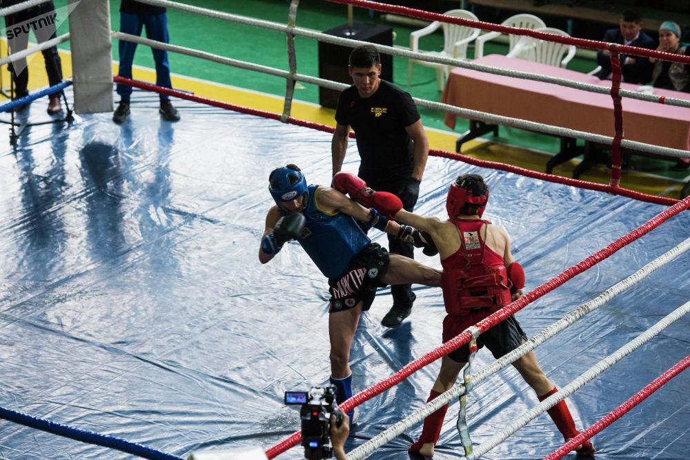Чемпионат тай бокстун IFMA версиясы боюнча өттү