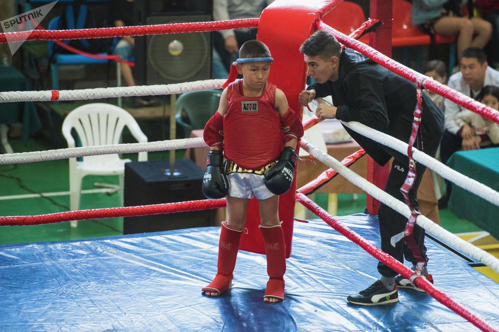9-12-май күндөрү борбордогу Каба уулу Кожомкул атындагы Спорт сарайында тай боксу боюнча Кыргызстандын чемпионаты өттү