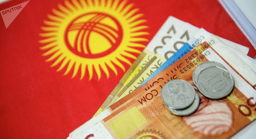 Купюры и монеты сома на фоне флага Кыргызстана