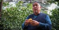 Мынчалык кирешелүү экени оюма келбептир!Лимон өстүргөн багбандын шыктандырчу маеги