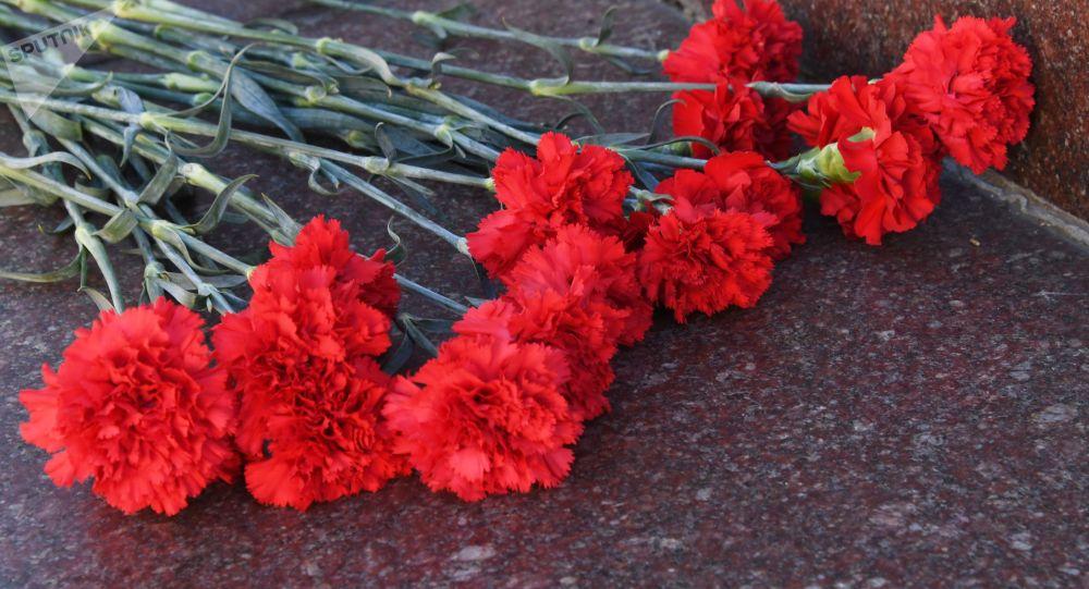 Цветы. Архивное фото