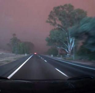Такой сильной бури, которая обрушилась на австралийский город Милдьюра, местные жители не видели почти 50 лет.