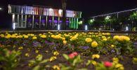 Клумбы украшенные цветами у здания Кыргызской национальной филармонии им. Т. Сатылганова в Бишкеке. Архивное фото