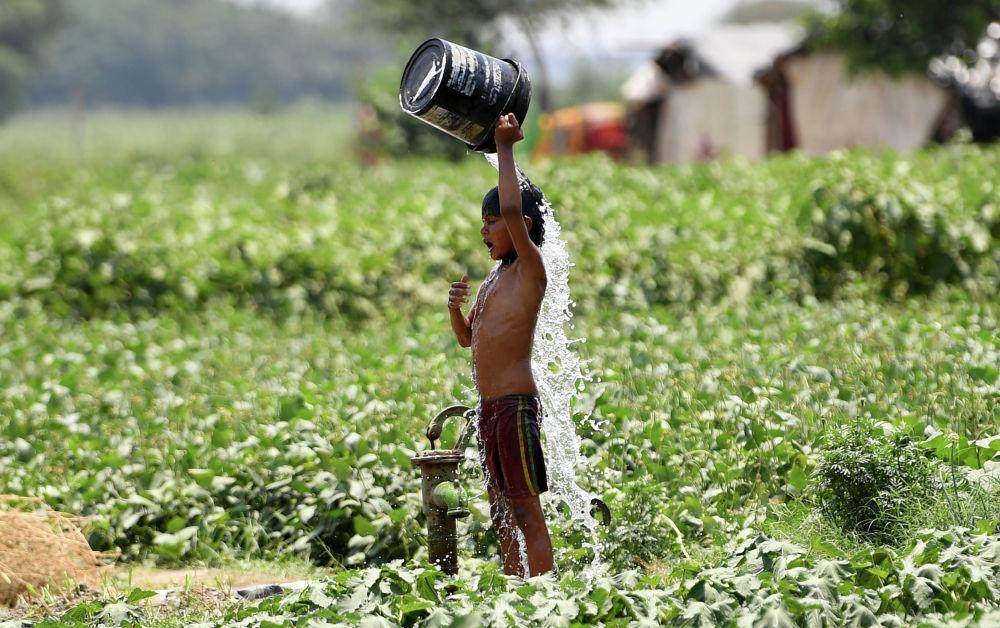 Нью-Дели. Ысыктан улам сууга чайынган бала