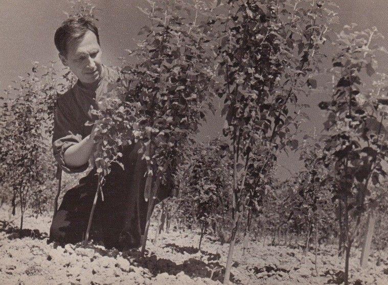 Первый директор Сары-Челекского государственного биосферного заповедника Николай Виноградов