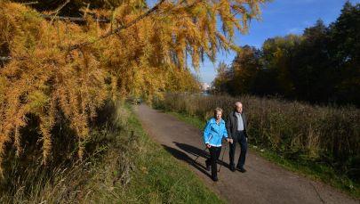 Пожилая пара гуляют по парку. Архивное фото