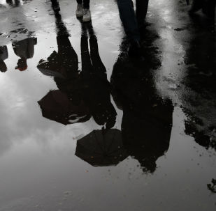 Отражение в луже воды людей с зонтами. Архивное фото